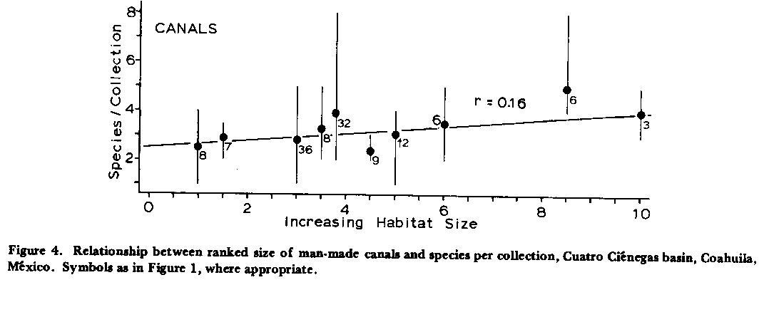Species diversity literature review